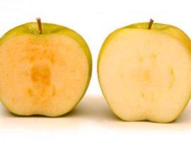 ¿Por qué las manzanas se ponen de color café?
