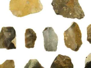 Características del paleolítico