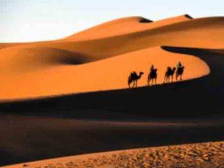 Características del desierto